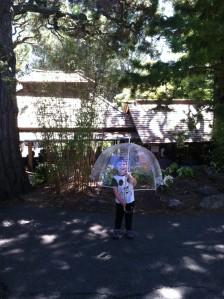 At the Japanese Tea Garden in Golden Gate Park