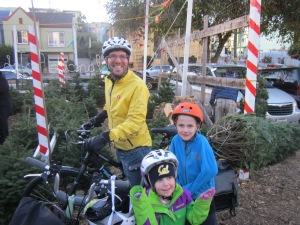 Christmas tree on bike, yet again