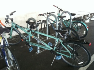 Cannondale tandem hanging out at work